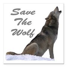 "save the wolf Square Car Magnet 3"" x 3"""