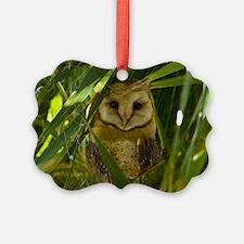Palm Tree Owlet Ornament
