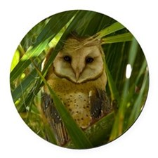 Palm Tree Owlet Round Car Magnet