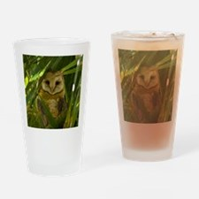 Palm Tree Owlet Drinking Glass