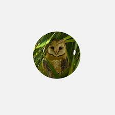 Palm Tree Owlet Mini Button