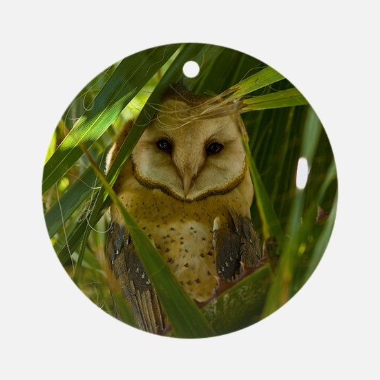 Palm Tree Owlet Round Ornament