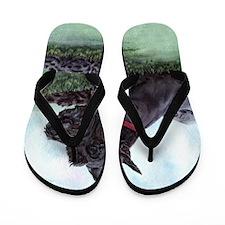 Bizmark11x11 Flip Flops