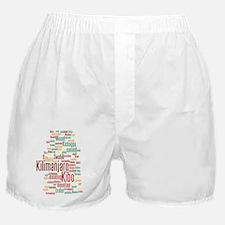 wordle 5 dark kilimanjaro Boxer Shorts