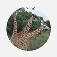 three giraffes Ornament (Round)