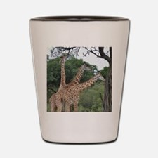 three giraffes Shot Glass