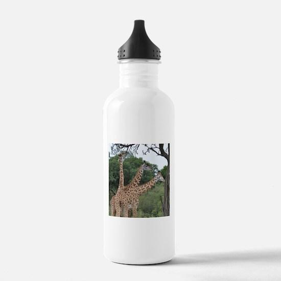 three giraffes Water Bottle