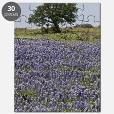 BlueBonnetsAndTree Puzzle