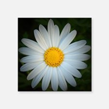 "White Daisy Square Sticker 3"" x 3"""