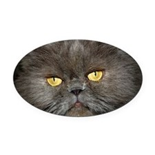 Charcoal Persian Oval Car Magnet