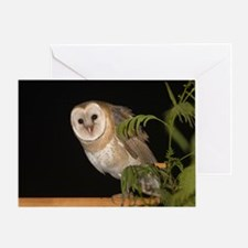 4D5Q9006 Oh Hi Greeting Card