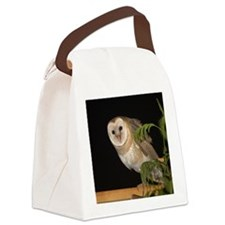 4D5Q9006 Oh Hi Canvas Lunch Bag