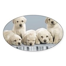 cute_puppies-normal Stickers