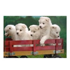 wagonload_of_samoyed_pupp Postcards (Package of 8)