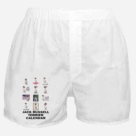 FIN-JRT-VERTCAL-cover Boxer Shorts