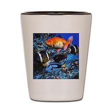 aqua Shot Glass
