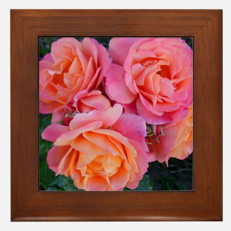 Delicate Pink Orange Rose Cluster Nyss Framed Tile