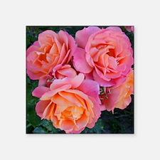 "Delicate Pink Orange Rose C Square Sticker 3"" x 3"""