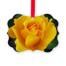 Yellow Rose Full Bloom A Ornament