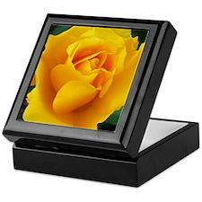 Yellow Rose Full Bloom A Keepsake Box