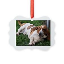 Carters hound dog ranch photos 06 Ornament
