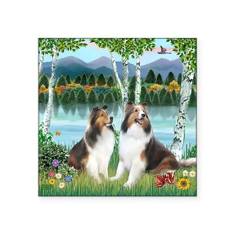 """Birches - 2 Shelties - squa Square Sticker 3"""" x 3"""""""
