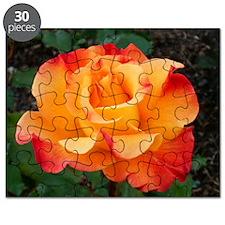 Orange Red Rose Puzzle