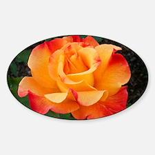 Orange Red Rose Decal