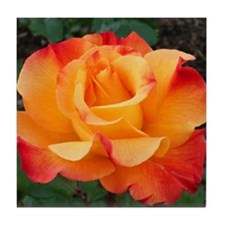 Orange Red Rose Tile Coaster