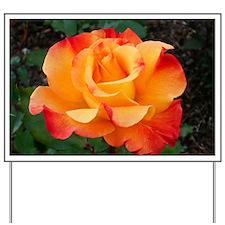 Orange Red Rose Yard Sign