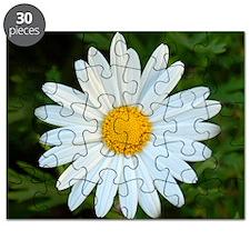White Daisy Puzzle