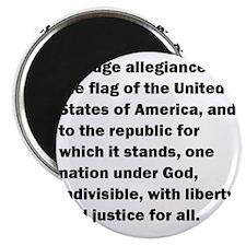 pledge01 Magnet