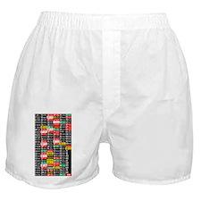 Muni lines rollsign Boxer Shorts