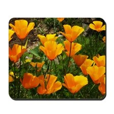 Flock of Buttercups A Mousepad