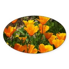 Flock of Buttercups A Decal