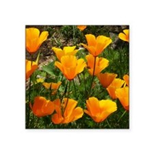 "Flock of Buttercups A Square Sticker 3"" x 3"""