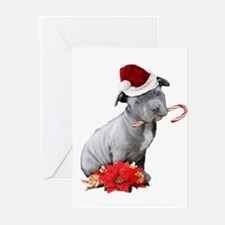 Christmas Pitbull puppy Greeting Cards