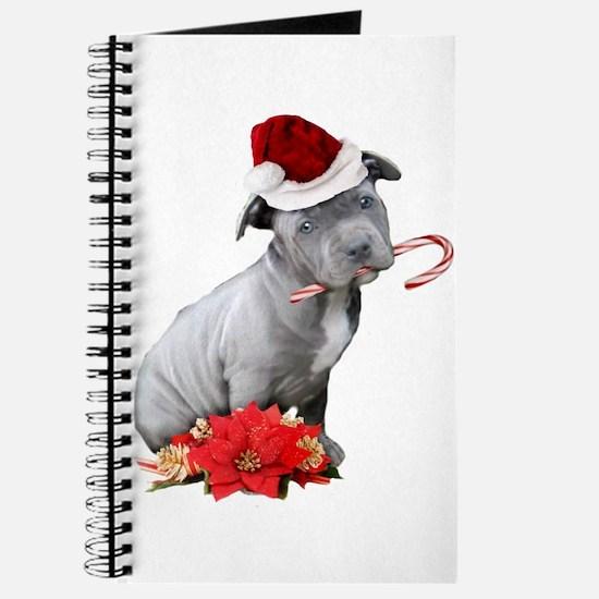 Christmas Pitbull puppy Journal