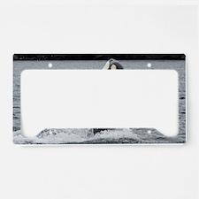 IMG_2406 License Plate Holder
