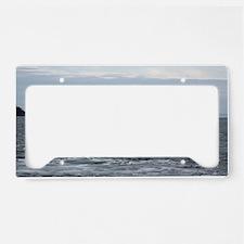 IMG_2447 License Plate Holder