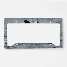 IMG_2407 License Plate Holder