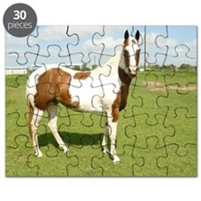 Tracy Puzzle