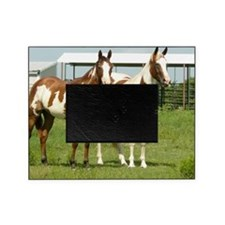 Tracy and Spirit Picture Frame