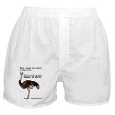 ostrich001 Boxer Shorts