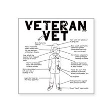 "veteranvetfemale maybeuse Square Sticker 3"" x 3"""