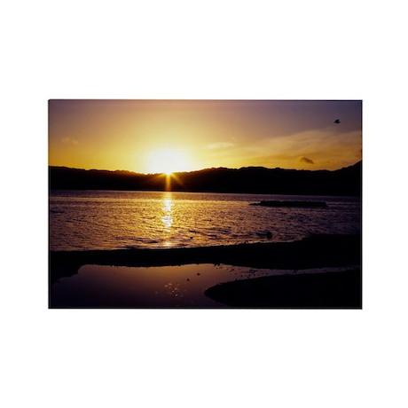 Lake-Rotorua-Sunrise-birds-182-10 Rectangle Magnet