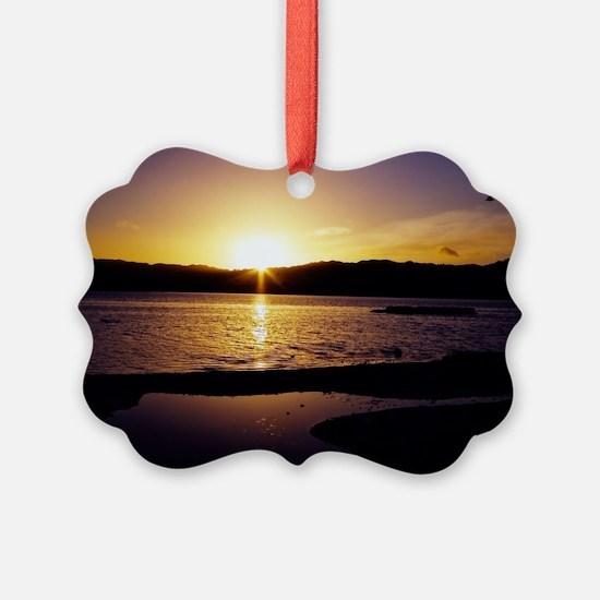 Lake-Rotorua-Sunrise-birds-182-10 Ornament
