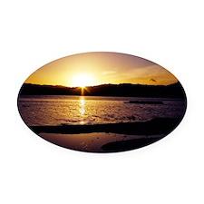 Lake-Rotorua-Sunrise-birds-182-10 Oval Car Magnet