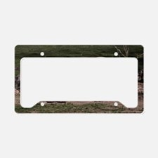 (6) Rhino Double Head License Plate Holder