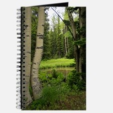 Pine tree forest Journal
